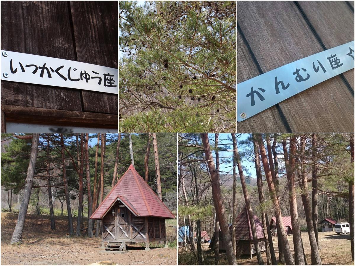 松林ゾーン